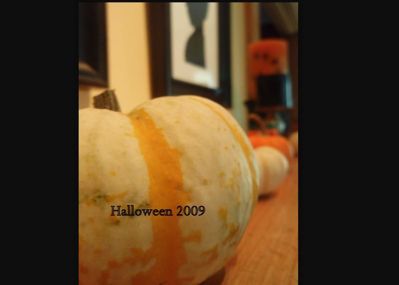 2008-10-16 summer&fall081