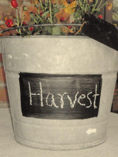 October & halloween, etc 09 050
