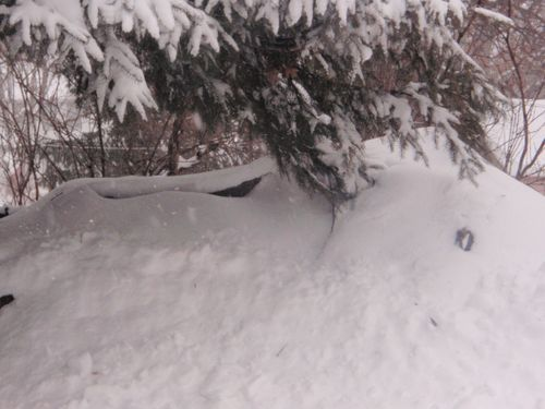 Snow days 034